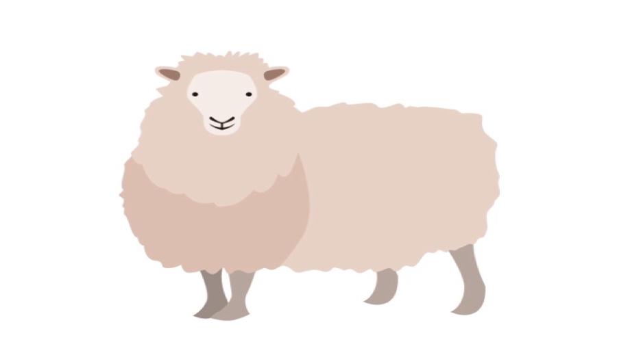 羊プラセンタ