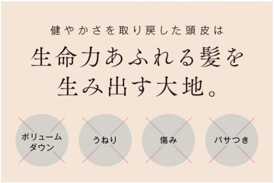 Hanaオーガニック リセットシャンプー効果