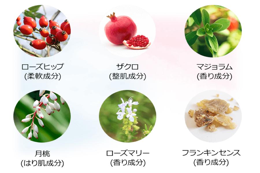 月桃 ナイトリペア 有効成分